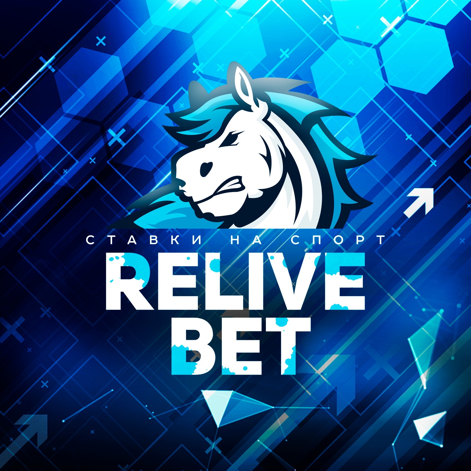ReLive-Bet-фото